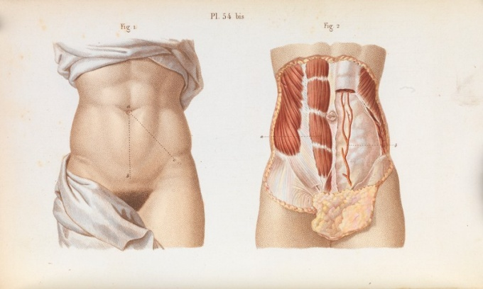 Historical anatomical figures