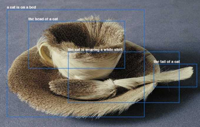 "demonstration of image-recognition software; shows inanimate objects made of fur with parts labeled as: ""a cat is on a bed,"" ""the head of a cat,"" the cat is wearing a white shirt"" and ""the tail of a cat.""."