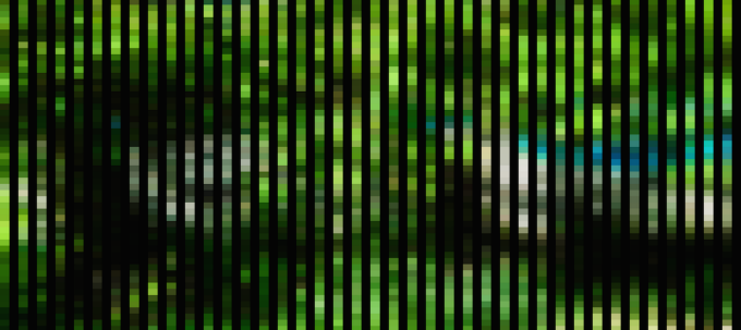 abstract art, black stripes overlay on green.