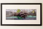 "Stephen Marc, untitled montage, 2005; archival ink jet print on paper. The forest in upstate New York is the backdrop for the arms of an underground railroad descendant covered with wormwood and a tobacco leaf, and text from an 1835 ""last will and testament"" referencing the distribution of slaves."
