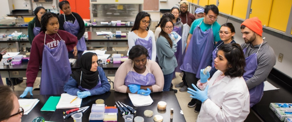 CRISPR lab exercise proves successful with students.