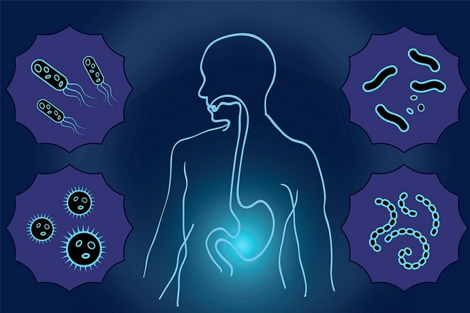 Graphic of human body outline linking the mouth and gut. Body is surrounded by images of microbes.