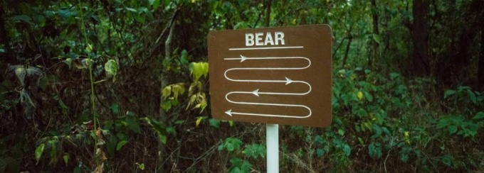 A brown sigh contains the word bear and meandering lines beneath it.