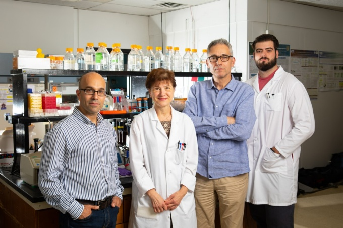 Four researchers standing in the lab.