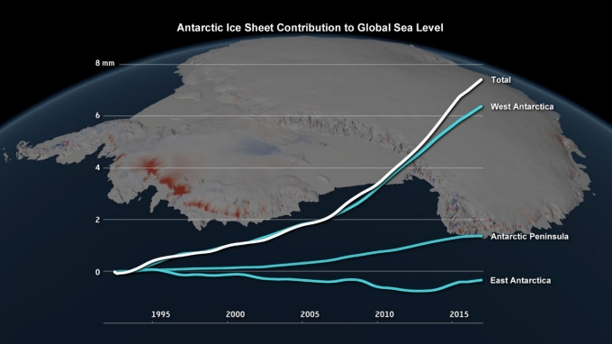 Graph showing the Antarctic Ice Sheet's contribution to global sea level.