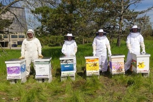 Group of students, all wearing bee suits, stand next to the newly installed bee boxes.