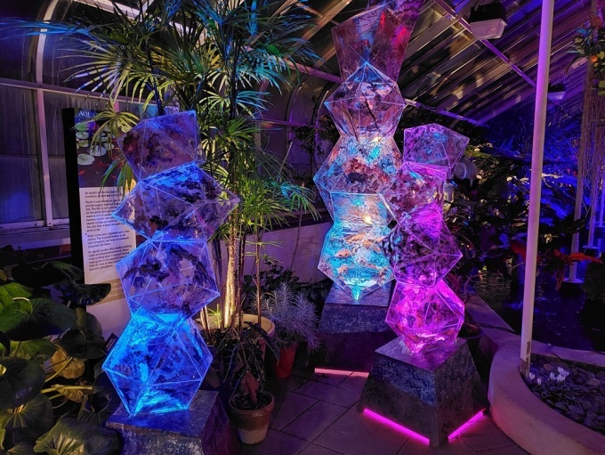 CAIRNS, an exhibit for Lumagination designed by Professor of Scenography Lynne Koscielniak along with BFA Theatre Design and Technology major and CAS College Ambassador Hannah S. Wolland, can be found in proximity to the Asian Rainforest.